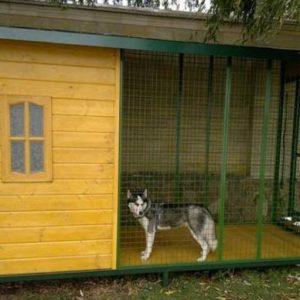 Как выбрать и где установить вольер для крупных собак