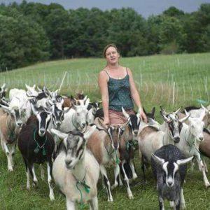 Разведение коз для новичков